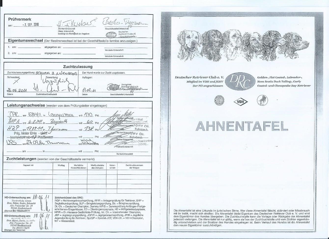 Erfreut Urd Vorlage Galerie - Entry Level Resume Vorlagen Sammlung ...